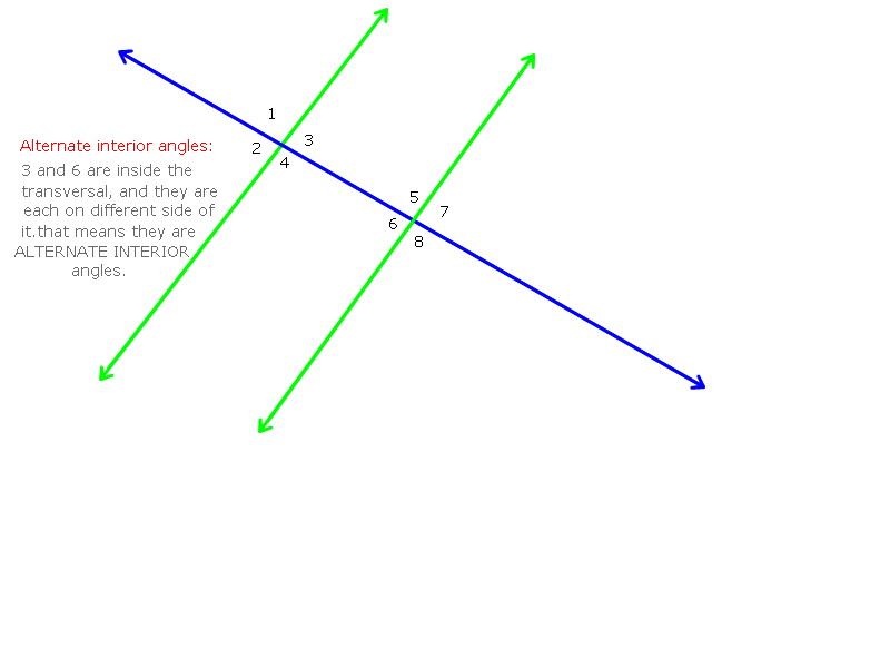 Adjacent Angles Related Keywords & Suggestions - Adjacent Angles Long ...
